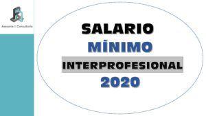 salario mínimo interprofesional